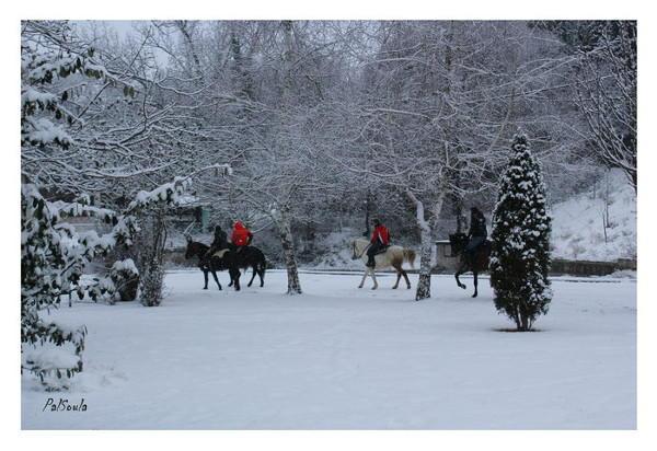 Οι καβαλάρηδες του Κρόκου στο χιονιά για τον Άγιο Νικάνορα