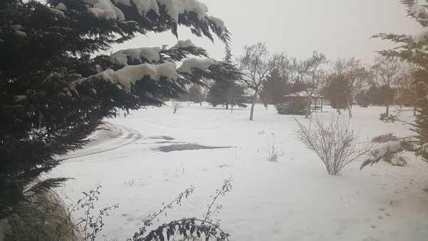 Στο διοικητήριο του ΛΚΔΜ-ΔΕΗ με -12 βαθμούς Κελσίου και αρκετό χιόνι!