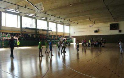 Τουρνουά Handball Δημοτικών Σχολείων με αφορμή το Final Four του Κυπέλλου Ελλάδος!