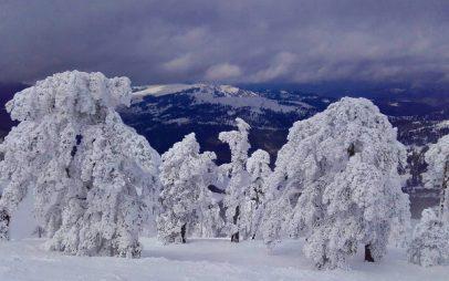 Σημερινές φωτογραφίες από το χιονοδρομικό κέντρο της Βασιλίτσας