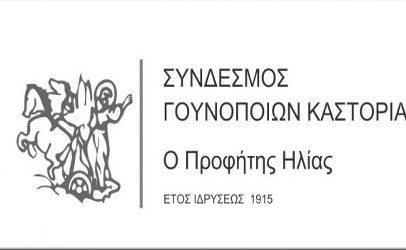Η Διεθνής Έκθεση Γούνας Καστοριάς δίνει ζωή και ανάσα στον τόπο μας