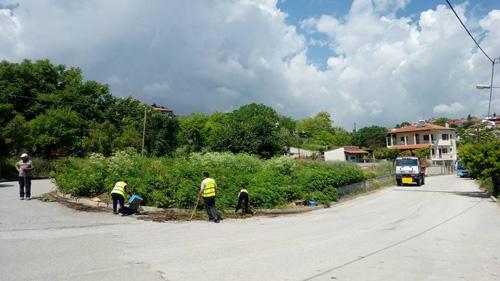 Συνεχίζονται οι παρεμβάσεις σε θέματα καθαριότητας και πρασίνου στην πόλη της Κοζάνης