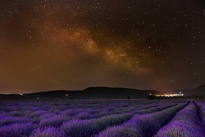 Η φωτογραφία της ημέρας: Λεβάντα με θέα το γαλαξία… στη Ξηρολίμνη Κοζάνης (Αρύρης Καραμούζας)