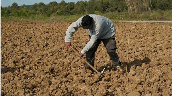 Αποτέλεσμα εικόνας για 4η Τροποποίηση Απόφασης για την υποβολή στο Υπομέτρο 6.3 «Ανάπτυξη μικρών γεωργικών εκμεταλλεύσεων»