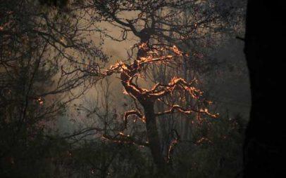 Η φωτιά στο Βροντερό Φλώρινας βρίσκεται σε ύφεση