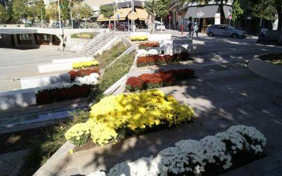 Πολύχρωμη από νέα άνθη η κεντρική πλατεία Κοζάνης