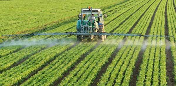 Αποτέλεσμα εικόνας για φυτοπροστατευτικό