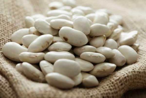 Το αρδευτικό στο Σισάνι δίνει νέα ώθηση στους φασουλοπαραγωγούς