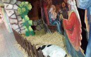 Η φωτογραφία της ημέρας: Η φάτνη με τα ζώα στην πλατεία της Κοζάνης