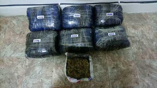 Συνελήφθη 37χρονος την ώρα που μετέφερε 8,343 κιλά κάνναβη