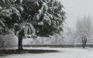 Η πρόβλεψη καιρού του Γιώργου Βασιλειάδη, μιλάει για 25εκ χιονιού στην Κοζάνη. Δείτε αναλυτικά