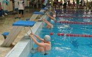 Τα μικρά «αστέρια» δημοτικών σχολείων ξεδίπλωσαν το ταλέντο τους στην κολύμβηση!