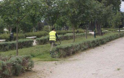 Ολοκληρώνονται σήμερα οι εργασίες συντήρησης πρασίνου στο Δημοτικό Κήπο Κοζάνης