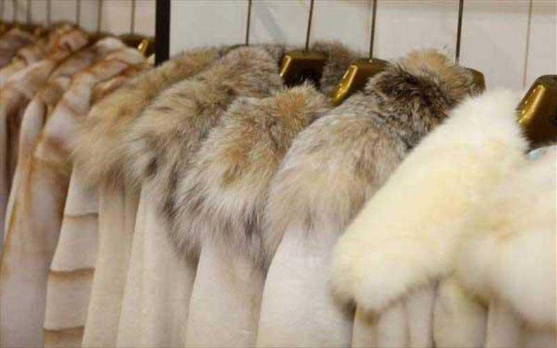 Αποτελέσματα δημοπρασίας Μαρτίου 2021 της Saga Furs