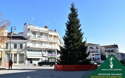 Φυσικό έλατο ύψους 15 μέτρων θα στολιστεί φέτος στην κεντρική πλατεία του Άργους Ορεστικού