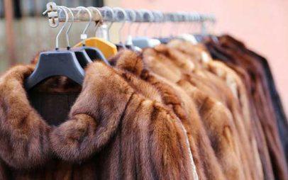 Saga Furs: Η δημοπρασία Ιουνίου θα πραγματοποιηθεί διαδικτυακά μεταξύ 10-17.6Δημοπρασία Ιουνίου της Saga Furs