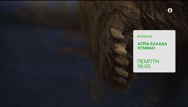 """Σήμερα στις 18.00 στην ΕΡΤ3 θα προβληθεί το επεισόδιο της εκπομπής """"Άγρια Ελλάδα"""" με προορισμό το Νυμφαίο και τον Αρκτούρο"""