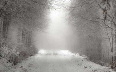 Η φωτογραφία της ημέρας από τον Αργύρη Καραμούζα:Τα πρώτα χιόνια στο Βίτσι