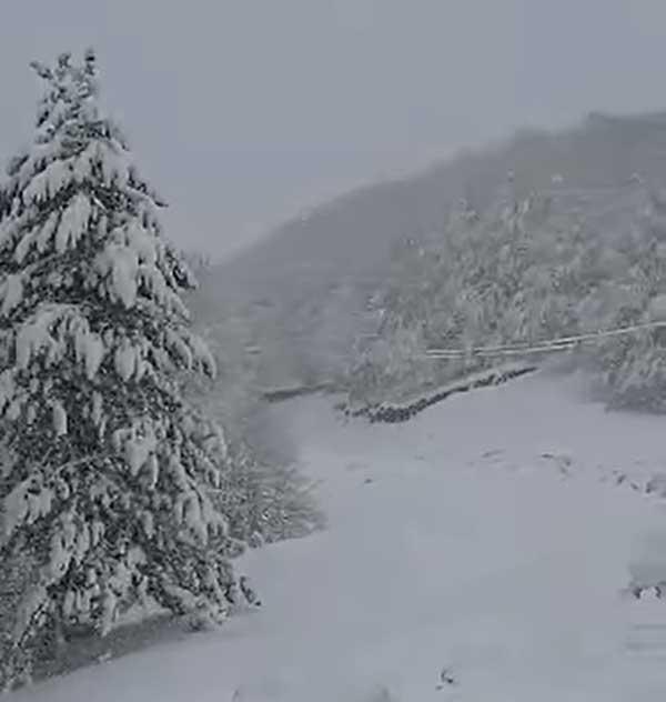 Ξεκίνησε η χιονόπτωση στη Βασιλίτσα Γρεβενών