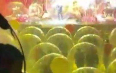 Συναυλία σε καιρό κορονοϊού: Μέσα σε φούσκες ανά 3 άτομα με πετσέτες, νερό και οξυγόνο