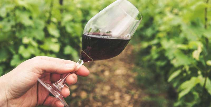 Καταβολή της κρατικής ενίσχυσης στο μέτρο της απόσταξης οίνου σε περίπτωση κρίσης, για το έτος 2021, ύψους 12 εκατομμυρίων ευρώ