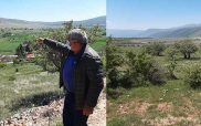 Σιδερά, μια θάλασσα φωτοβολταϊκών πάρκων σε ένα ορεινό χωριό της Κοζάνης -Οι κτηνοτρόφοι κινητοποιούνται