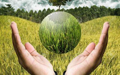 Κωστής Μουσουρούλης: Είναι έντονο το επενδυτικό ενδιαφέρον για τον «πράσινο» αγροτοβιομηχανικό τομέα στην Δυτική Μακεδονία και τη Μεγαλόπολη