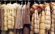 Ισραήλ: Η πρώτη χώρα που απαγορεύει το εμπόριο της γούνας ζώων στη μόδα