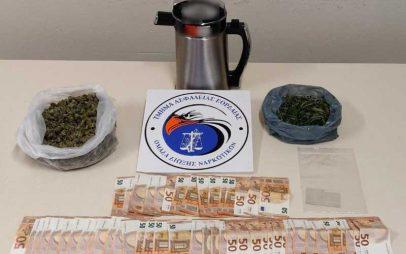 Συνελήφθησαν 2 άτομα από αστυνομικούς του Τμήματος Ασφάλειας Εορδαίας για διακίνηση ναρκωτικών ουσιών, καθώς και για καλλιέργεια δενδρυλλίων κάνναβης, σε περιοχή της Θεσσαλονίκης