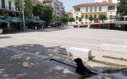 Φωτογραφία της ημέρας: Σκυλάκος απολαμβάνει τη δροσιά στην πλατεία Κοζάνης