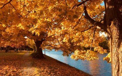 Φθινοπωρινή ισημερία και επίσημη έναρξη του φθινοπώρου σήμερα