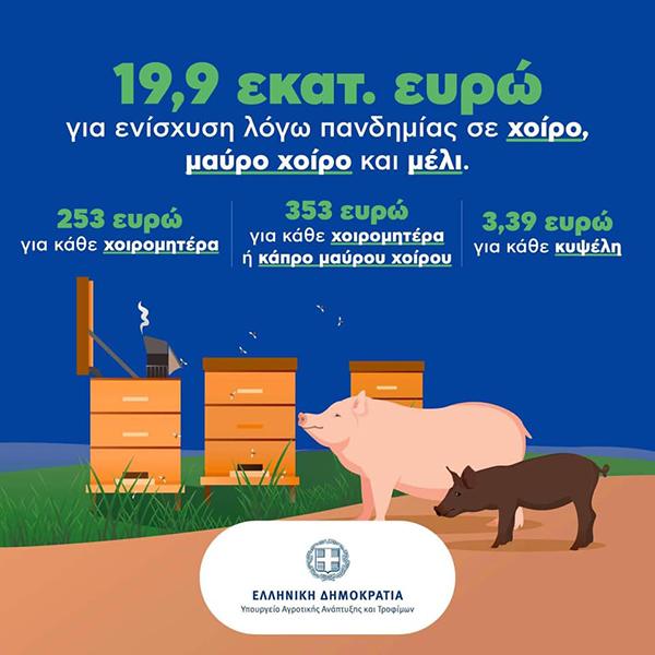 Μελισσοκομικός Σύλλογος Κοζάνης: Eγκρίθηκαν τα ποσά για την Covid-19 ενίσχυση των μελισσοκόμων