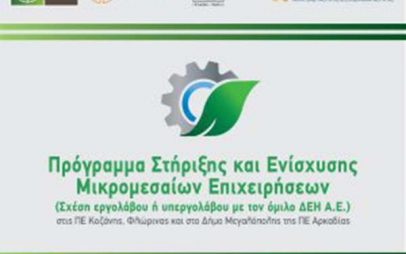 Πρόγραμμα Ενίσχυσης Μικρομεσαίων Επιχειρήσεων ΠΕ Φλώρινας, Κοζάνης και Δήμου Μεγαλόπολης