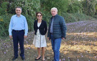 Επίσκεψη του Γ. Κασαπίδη και της Διευθύνουσας Συμβούλου του ΔΕΣΦΑ Μ. Γκάλι σε φυτεία κρόκου