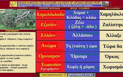Ποντιακές λέξεις με αρχαιοελληνική προέλευση