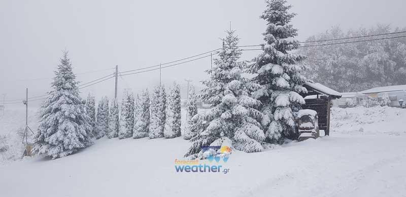Φωτογραφία ημέρας: Το Χιονοδρομικό Κέντρο Πισοδερίου στα λευκά με 20 πόντους χιόνι